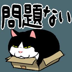おはぎ(動)