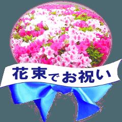 花束でお祝い(写真使用)
