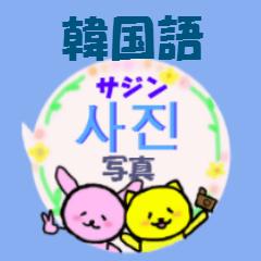 韓国語と日本語 ふきだしアニマル