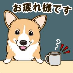 気軽にスタンプ コーギー 冬編