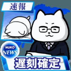 動く!ぬっこぬこテレビ~報道編~