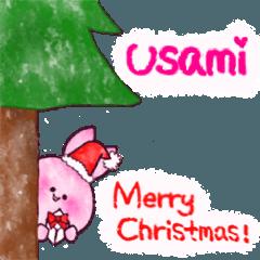 12月の うさみちゃん