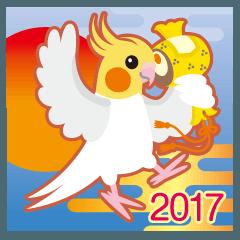 2017〜ほっぺがキュートなオカメインコ