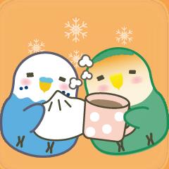 おしゃべりインコちゃんズの冬の社交上手