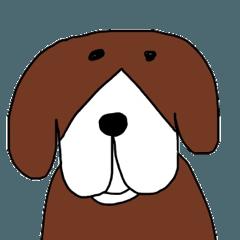 ビーグル犬ミッキー