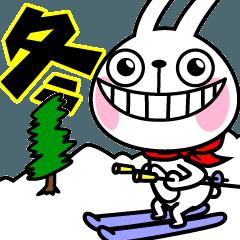 動いた!ウサギ魂12 ~冬~