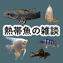 リアル熱帯魚スタンプコレクション
