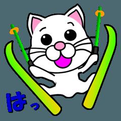 しろ猫のスキー
