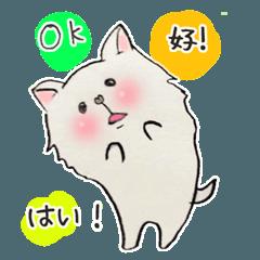 白犬ルンちゃん(中国語と日本語)