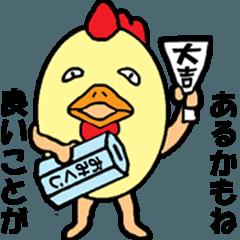 動画?「あほヅラ」な鳥(正月編)