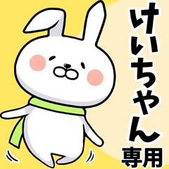 けいちゃん専用ウサギだよ