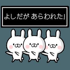 【吉田さん】専用名前ウサギ