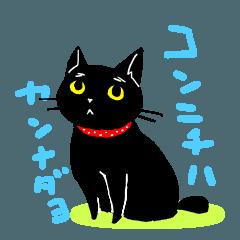 黒猫かんなさんの美しい日常