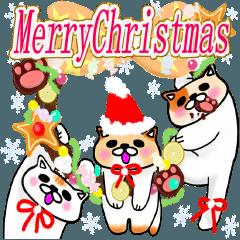 猫のむーくん(クリスマスとお正月編)