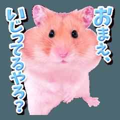 関西弁★幸せのピンクハムスター
