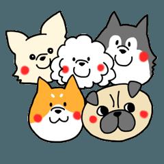 5匹の犬たち
