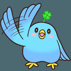 幸あれ☆幸運の青い鳥