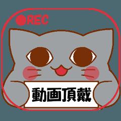[LINEスタンプ] らぶぺた【ネコ】