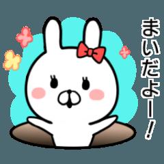 【まい】専用名前ウサギ