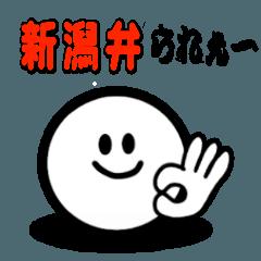 新潟弁 大人シンプル 顔文字