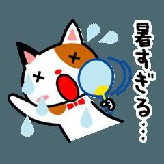 三毛猫のみいちゃん