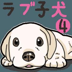 わんこ日和ラブラドールの仔犬 4