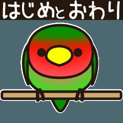 [LINEスタンプ] こざくらいんこ [Ver7](動く・始めとおわり