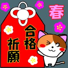 4匹の子猫 合格祈願・受験