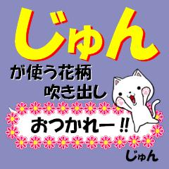 超★じゅん(ジュン)なネコ