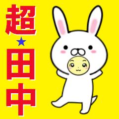 超★田中なウサギ