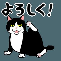 おはぎ(動)2