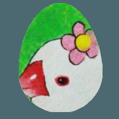 かわいい文鳥たち │ Part 1