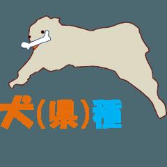 犬(県)種