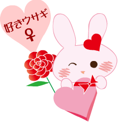好きウサギ(メス)